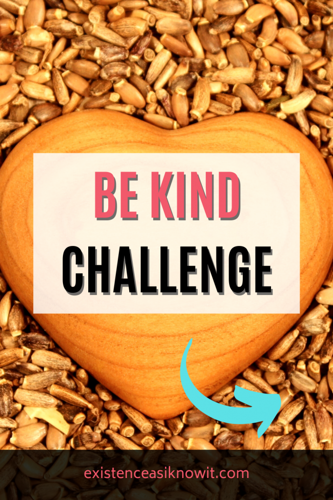 Be Kind Challenge Promotion